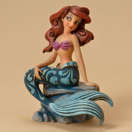 Splash of Fun ( Ariel) - 4023530