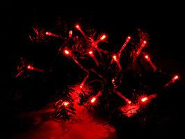 Lichterkette mit 20 roten LEDs