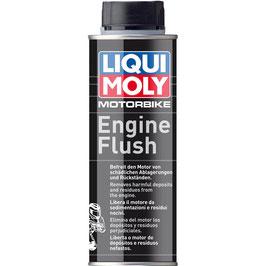 Motorbike Engine Flush (Spühlung vor Ölwechsel)