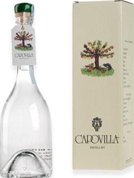 Distillato Pere di Miele (Honigbirne) 0,5 l Flasche, Capovilla