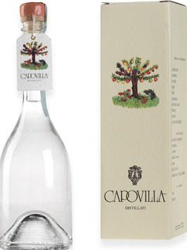 Distillato Pesche Saturno (Pfirsich) 0,5 l Flasche, Capovilla