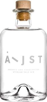 Aeijst Styrian Pale Gin, 0,5 l Flasche