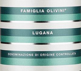 2019 Lugana DOC, Olivini