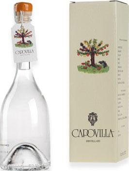 Distillato di Albicocche (Aprikose) 0,5 l Flasche, Capovilla