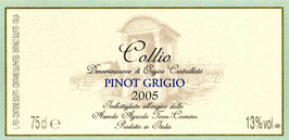 2011 Pinot Grigio Collio DOC, Toros