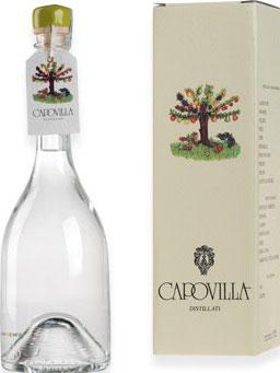 Distillato Mele Cotogne (Quitte) 0,5 l Flasche, Capovilla
