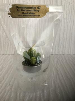 Kaktuskerze im Cognacglas