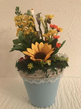 Topf mit Sonnenblume
