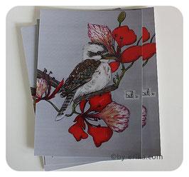 Kookaburra carte postale