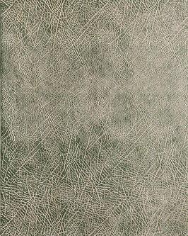 Epidermes 1205-106
