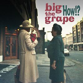 big the grape 1st mini album【How!?】