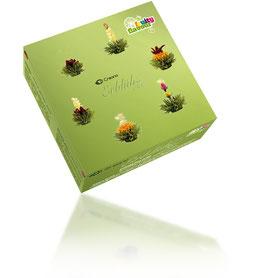 "6er ErblühTee Teebox ""Grüner Tee"""