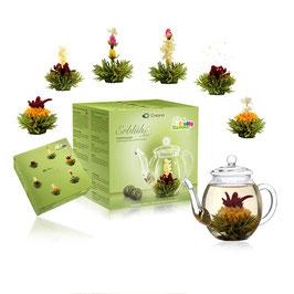 "ErblühTee Geschenkset ""Grüner Tee"""
