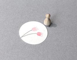 Mini tulipan Elle