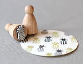 Obris ananasa - majhen