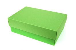 Darilna škatlica - velikost M v svetlo zeleni barvi apple