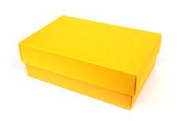 Darilna škatlica - velikost M v rumen barvi