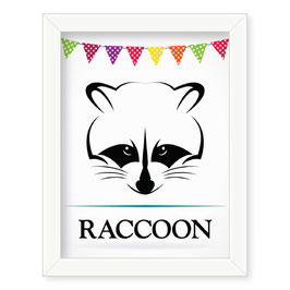 "Grafika ""Raccoon"""