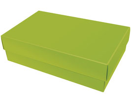 Darilna škatlica - velikost XL v svetlo zeleni barvi apple