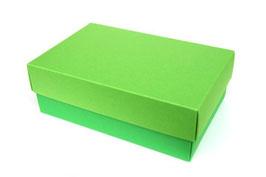 Darilna škatlica - velikost M v svetlo-temno zeleni barvi
