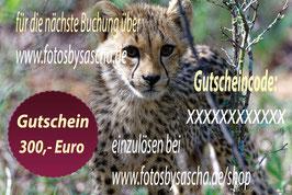 Gutschein 300,00 €