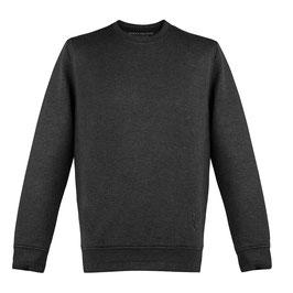 PHC Sport Sweatshirt in Grau