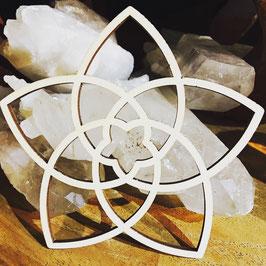 Venus Fleur - Fleur d'Amour - différentes tailles - bois