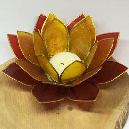 Eclairage d'ambiance Lotus Capiz en 3 couleurs: jaune / orange / rouge - avec bordure doré