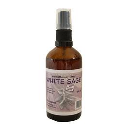 Sauge blanche en spray pulvérisateur