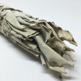 Sauge blanche batons - MINI fagots - 3 pièces par kit