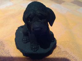 Schungit-Tierfigur: Hund
