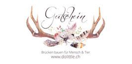 Gutschein für Waren und Dienstleistungen auf dolittle.ch