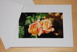 "Klapp-Foto-Postkarten ""Rosen"""