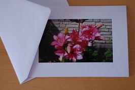 "Klapp-Foto-Postkarten ""Blumen I"""