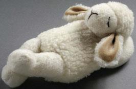 Schaf schlafend
