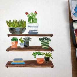 De Tekentafel - Eigen Tempo -  Thema cactussen en vetplanten