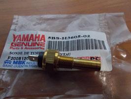 Yamaha YQ 50 - Wassertemperatur Sensor