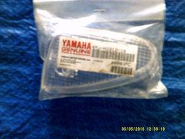 Yamaha, Schutzglas Blinker