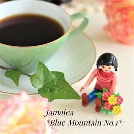 【数量限定】ジャマイカ ブルーマウンテンNo.1