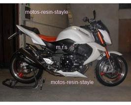 Puntale per Kawasaki z750 - 2007->2014 (cod. PU3)