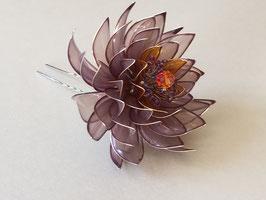 Seerose, violett