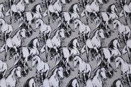 Wildpferde in schwarz/Weiß