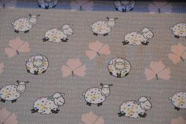Super schöne Schafe