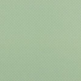 Baumwollstoff in Mint mit Weißen Punkten