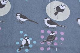 Hier setzen die Vögel die Punkte