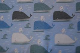 Freche Möwe auf Wal