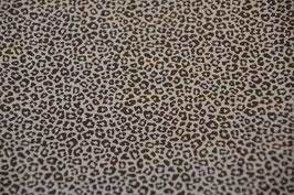 Der Leopard in Marine