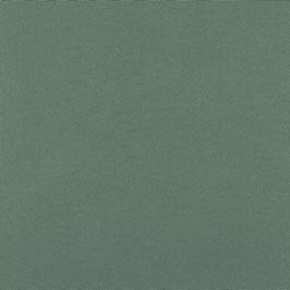 Outdoor Wasserproof Stoff Farbe: Grün