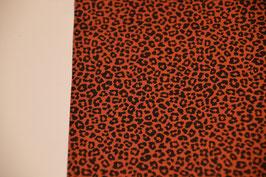 Der Leopard in Terra
