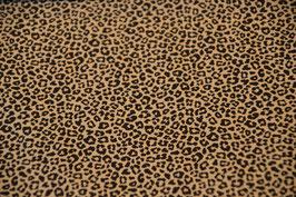 Der Leopard in Sand